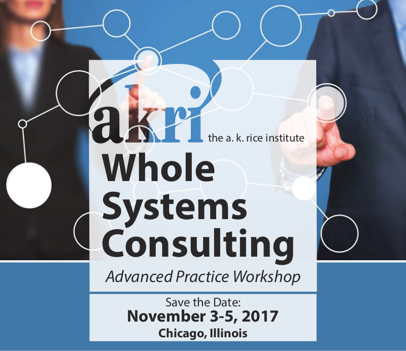 Whole Systems Consulting - Advanced Practice Workshop 2017
